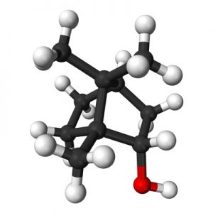 Molecule chain